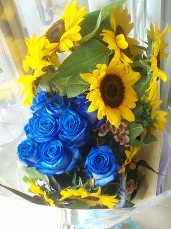 bluerose2.jpg
