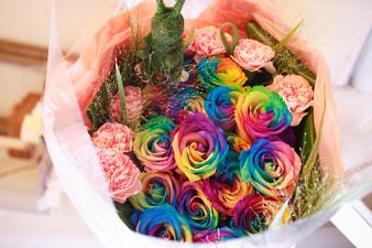 rainbow5.jpg