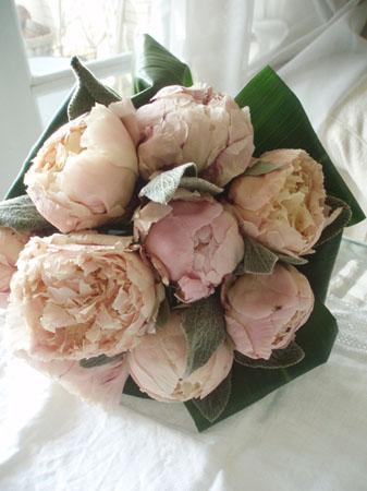 shakuyakuiceflower.jpg